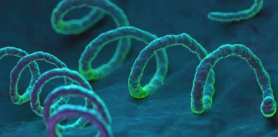 Βλεννόρροια/Ουρηθρίτιδα
